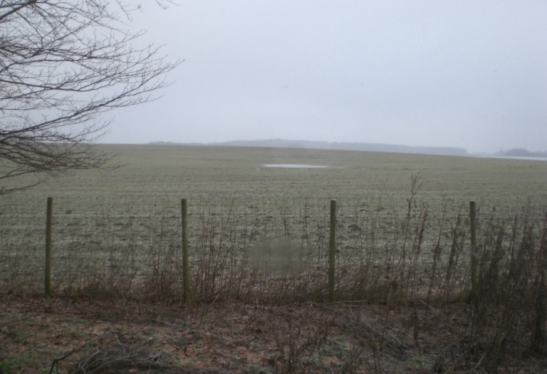 Mindre lejlighed til leje beliggende i naturskønt område uden for Vejlø by